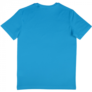 Nakedshirt-Mens-Fitted-T-Shirt-NA508030-Sapphire-blue-Back-500x500.png